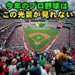 【前代未聞】今年のプロ野球戦の全72試合は無観客で実施決定する